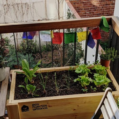 Comença el teu propi hort urbà a casa
