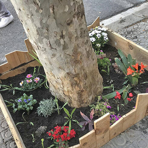 Plantació d' escocells i autoconstrucció de jardineres
