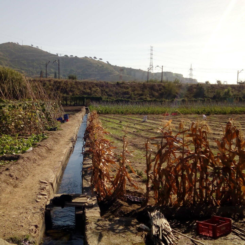 Recorregut d'aigua: Casa de l'aigua de Trinitat Nova, Horts de la Ponderosa,  Rec Comtal i Riu Besòs
