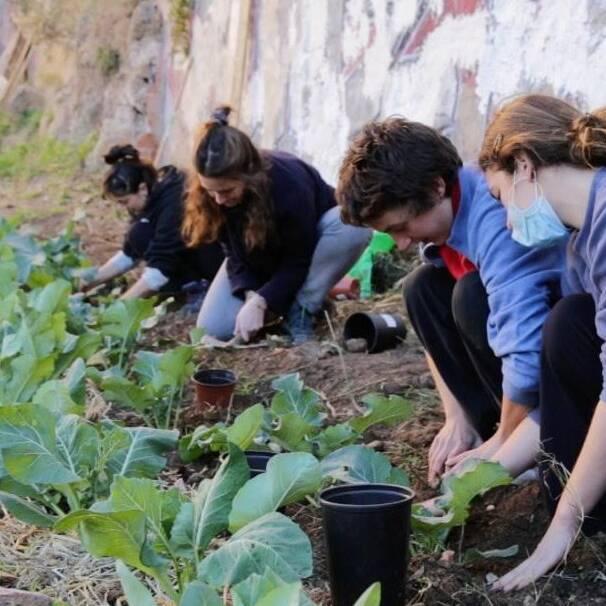 Passejada: cultivant la ciutat, horts del Coll i Vallcarca